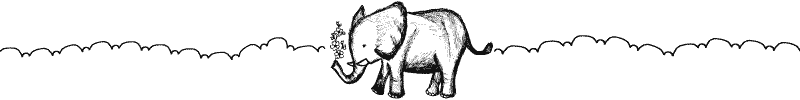 Section divider doodle of an elephant with flowers