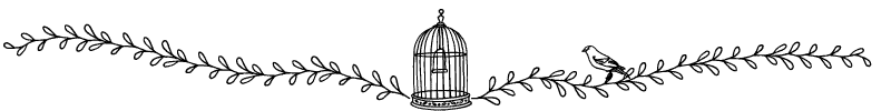 Section divider doodle of birdcage