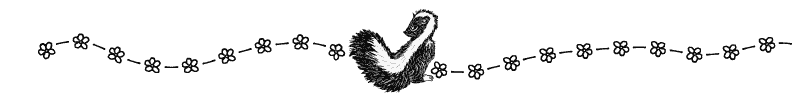 Section divider doodle of skunk