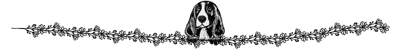 Section divider doodle of beagle looking over hedge