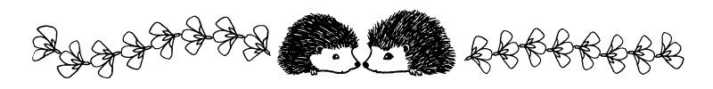 Section divider doodle of two hedgehogs touching noses