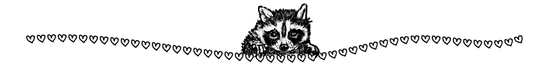 Section divider doodle of raccoon head