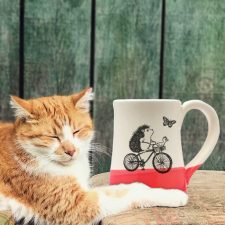 Handmade coffee mug with drawing of a hedgehog riding a bicycle while the duck navigates. Red accent color.