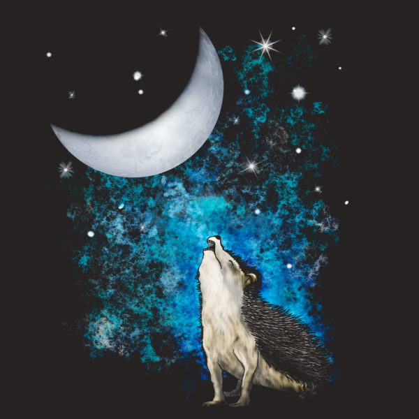 original drawing of wild hedgehog howling at the moon