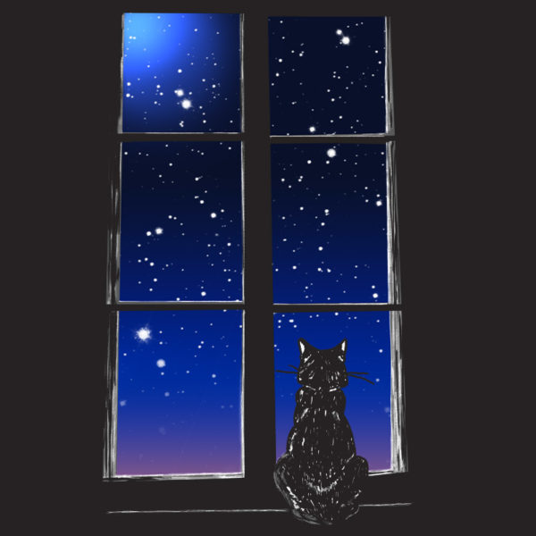 Closeup of graphic black tshirt with drawing of a cat staring at the sky